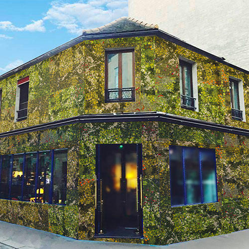 Plan B : le bar 100 % bio et « Origine France » de Biocoop